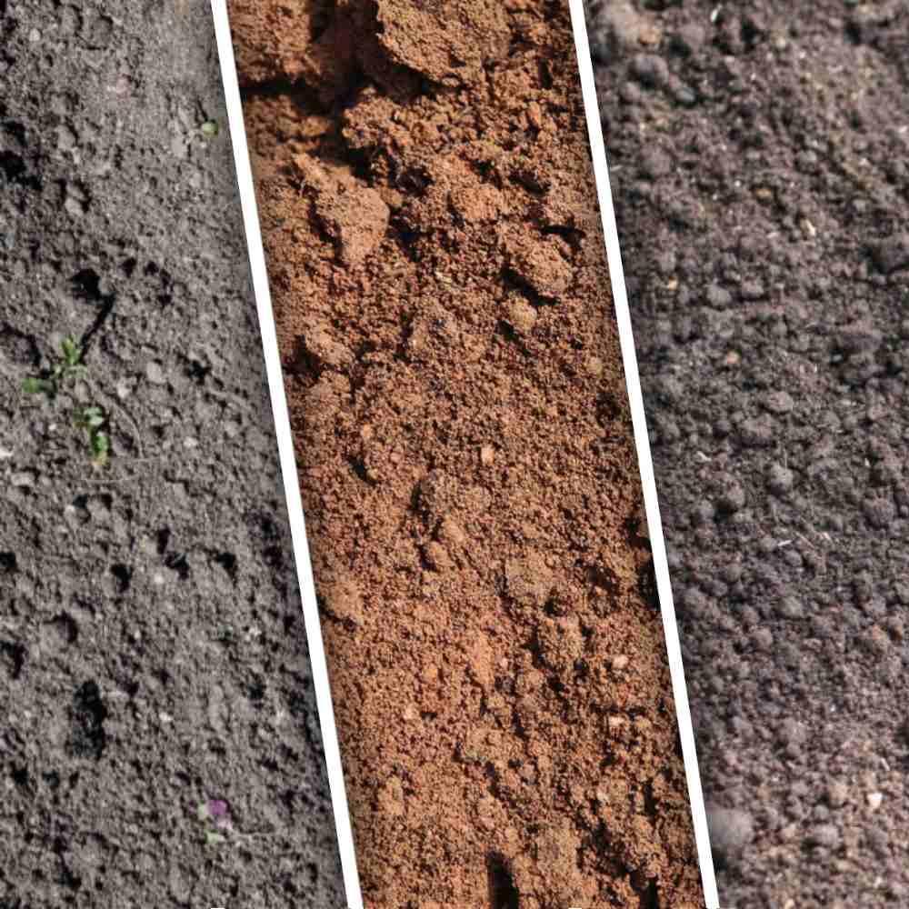 плодородный грунт торфогрунт с доставкой от 1м3 (куб)