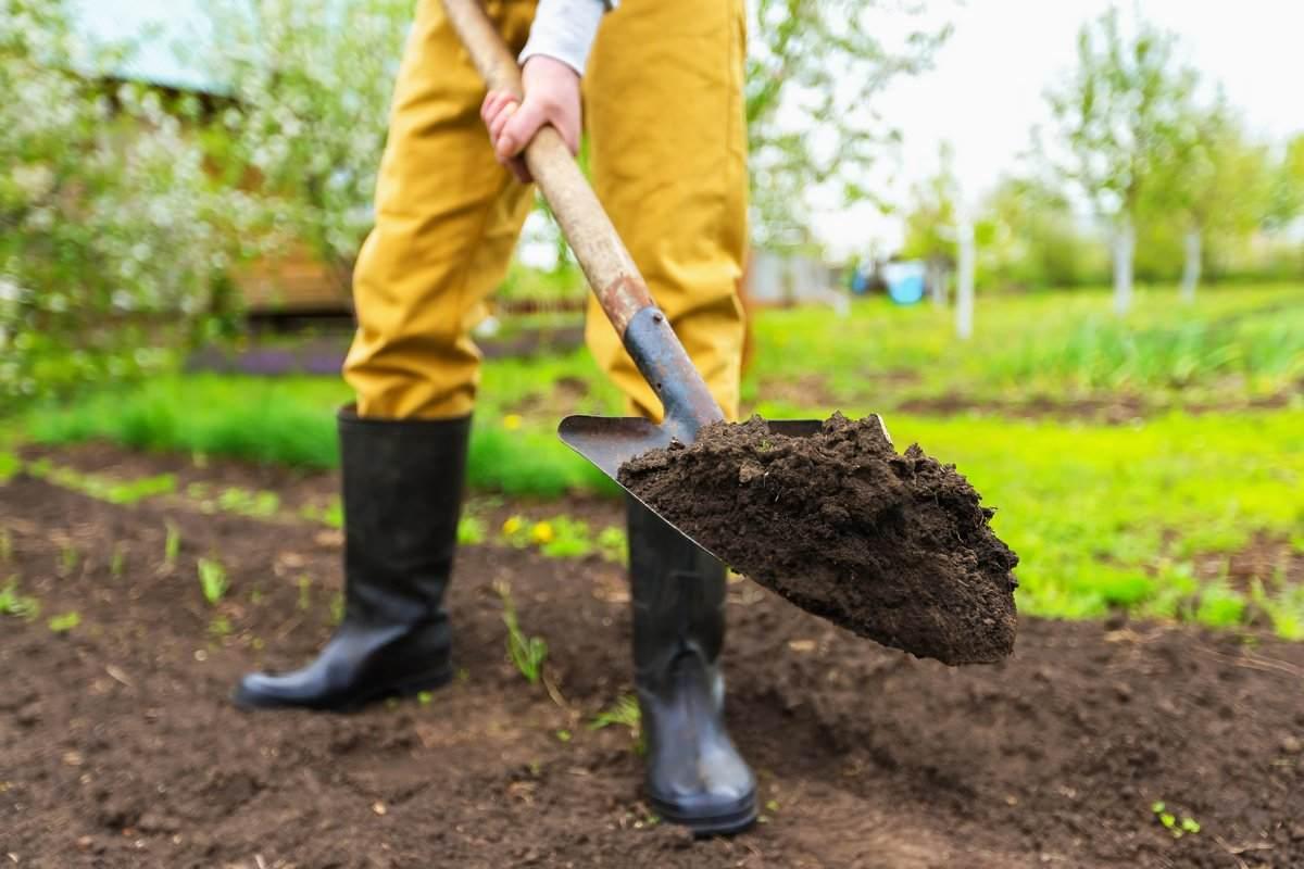 приобрести полевую землю с сельскохозяйственных полей недорого