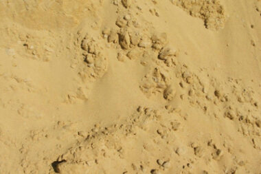 Карьерный песок в Санкт-Петербурге и ЛО